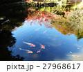 モネの池風 27968617