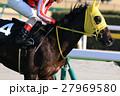 競馬 騎手 馬の写真 27969580