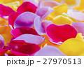 花びら 花弁 薔薇の写真 27970513