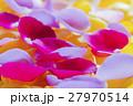 花びら 花弁 薔薇の写真 27970514