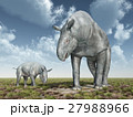 Adult and baby Paraceratherium 27988966