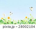春 野原 青空 (横) 28002104