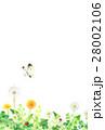 春 野原 (縦) 28002106