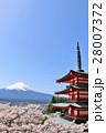 富士山と五重塔と春の風景 28007372