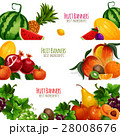 Garden and exoic fruits vector banners set Vector illustration 28008676