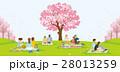 花見 桜 人々のイラスト 28013259