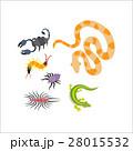ベクター 爬虫類 くものイラスト 28015532