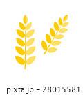 Ear wheat isolated vector. 28015581