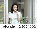 歯磨きをする若い女性 28024002