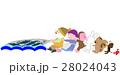 網漁の作業を手伝う動物たち 28024043