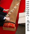 琴の演奏 28025331