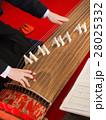 琴の演奏 28025332