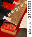 琴の演奏 28025333