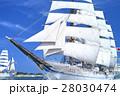 富山_新旧海王丸総帆展帆 28030474
