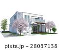 住宅 桜 28037138