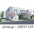 住宅 桜 28037139