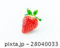 イチゴ 28040033