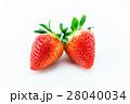 果物 フルーツ アップの写真 28040034