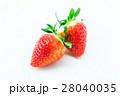 イチゴ 28040035