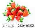 果物 フルーツ 苺の写真 28040352