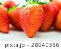 果物 フルーツ 苺の写真 28040356