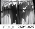 洗濯物 28041025