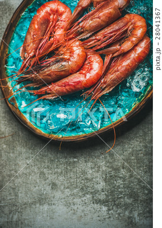 Raw uncooked red shrimps on ice, grey concrete 28041367