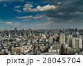 東京スカイツリー 東京 都市の写真 28045704