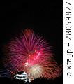 8月滋賀 彦根城・天守と打ち上げ花火 28059827