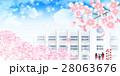 桜 入学式 春のイラスト 28063676