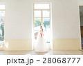 ウエディングイメージ、ベール、ウェディングドレス 28068777