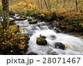 10月 石ヶ戸の瀬-紅葉の奥入瀬渓流- 東北の秋   28071467