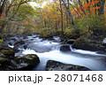 10月 三乱の流れ-紅葉の奥入瀬渓流-  東北の秋 28071468
