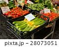 ローマの野菜売り場 28073051