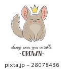 動物 チンチラ クラウンのイラスト 28078436