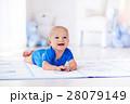 ベビー 赤ちゃん 赤ん坊の写真 28079149