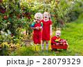 キッズ 子供 子の写真 28079329