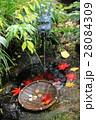 銭洗弁天 う 28084309