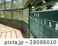 野球グラウンド (14) 28086010