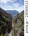 Grand Canyon National Park USA 7 28089013