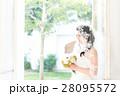 ウエディングイメージ、ベール、ウェディングドレス 28095572