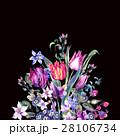 Vintage Flowers Watercolor Bouquet, Purple Tulips 28106734
