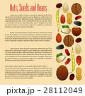 Nuts, seeds and beans nutrition vector poster 28112049