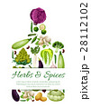 Vegetarian vector poster of fresh vegetables 28112102