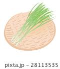 万能ねぎ <お野菜とざる> 28113535