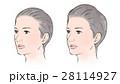 髪にボリュームのない女性、ある女性 28114927