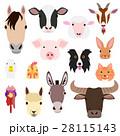 家畜の顔セット カラー 28115143