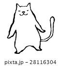 白猫 28116304