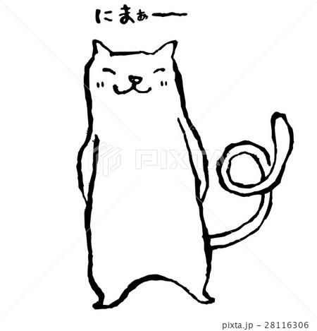 白猫 28116306