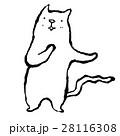 白猫 28116308